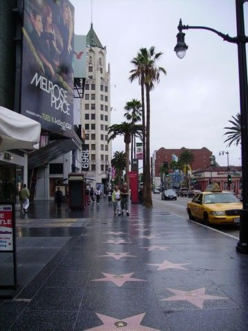 Photos courtesy of Hollywood Walk of Fame